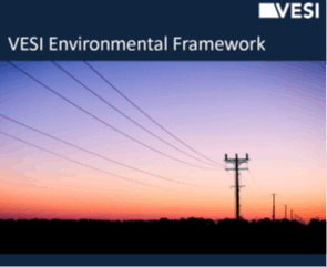 VESI Enviro Framework