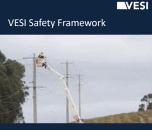 VESI Safety Framework